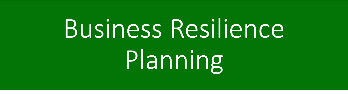 Business Resilience Planning